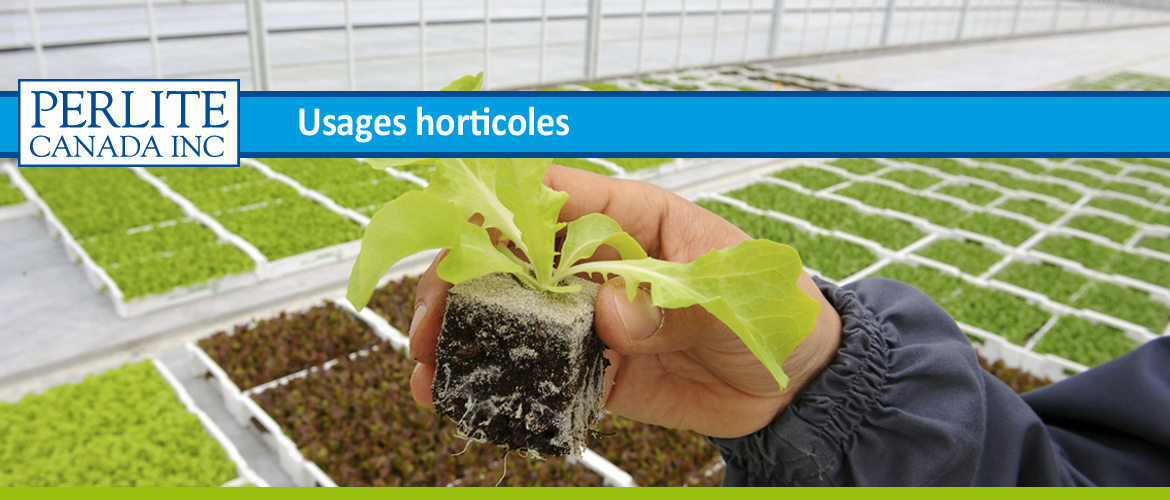 usages-horticoles-Perlite